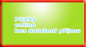 Půjčky online bez doložení příjmu